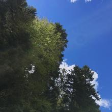 Himmelwärts