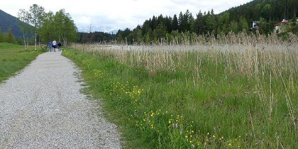 Wanderung am Kiesweg rund um den See