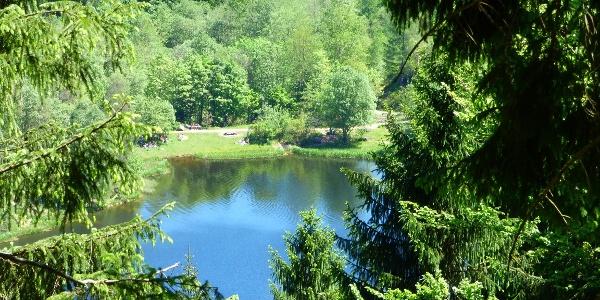 Der Sankenbachsee von oben