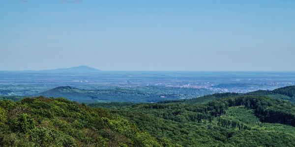 Tiszta időben feltűnik a tokaji Nagy-hegy (háttérben)