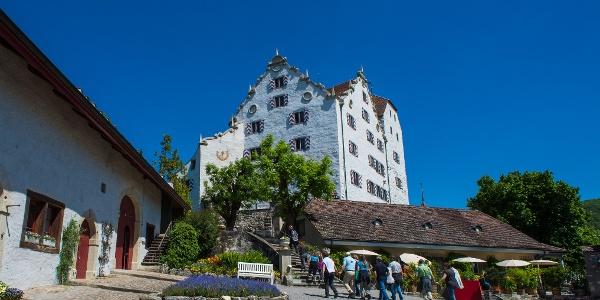 Schloss Wildegg Schlosshof