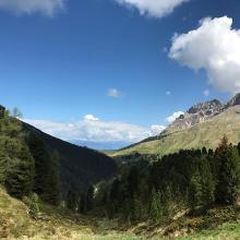 Panoramica dal sentiero 514