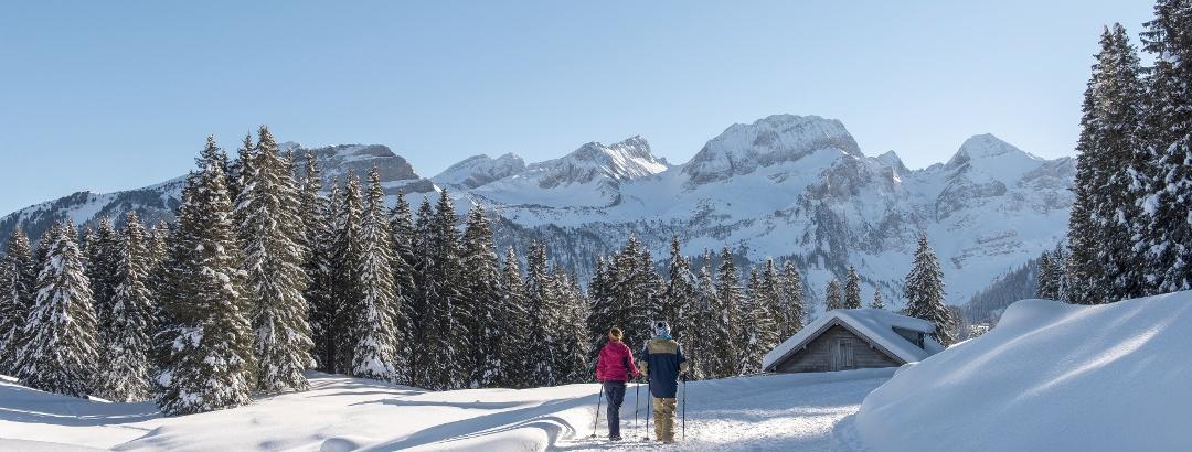 Winterwandern im Skigebiet Toggenburg