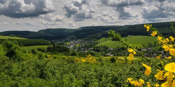Blick auf Westfeld
