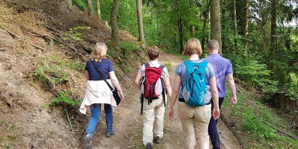 Unterwegs auf dem Medebacher Bergweg durch das Brühnetal