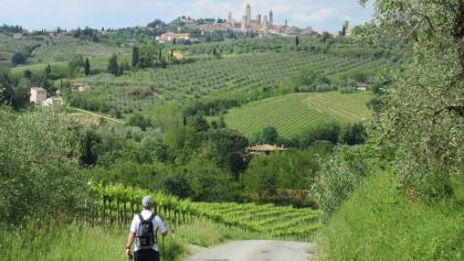 Approaching trail to San Gimignano