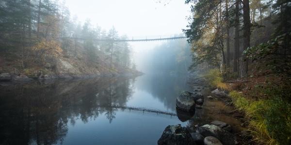 Bridge in Repovesi national park