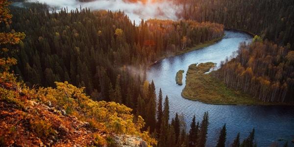Finland_Oulanka_national_park_autumn