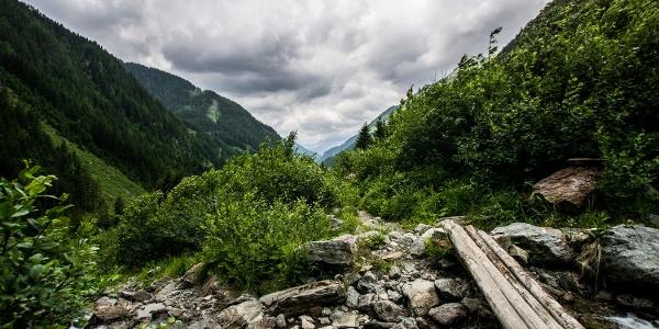 Auf dem Weg zur Neualm - Blick talauswärts ins Obertal