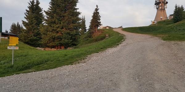 Abzweigung Richtung Sender und Kaibling Alm