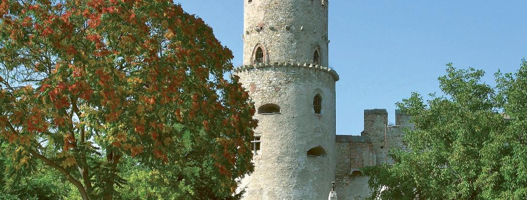 Burg Laa