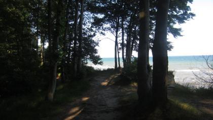 an der Steilküste nahe Bliesdorf (Juni 2016)