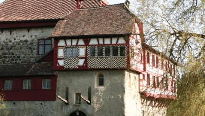 Wasserschloss Hagenwil (Foto: Wasserschloss Hagenwil)