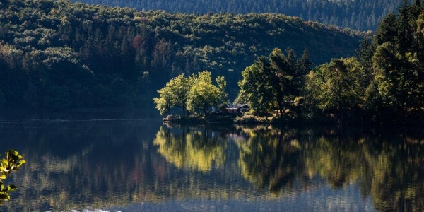 Blick auf den Obersee (Vorsperre der Rurtalsperre)