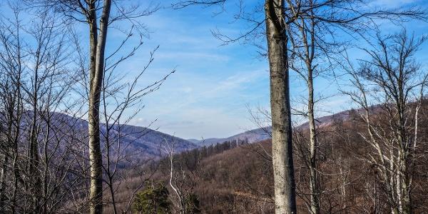 A Kemencei-Nagy-völgyet kísérjük túránk nagy részében