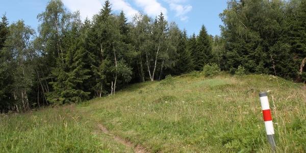 Ein kurzes Stück Single Trail