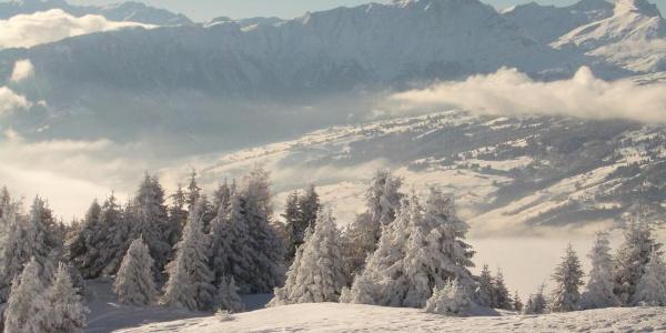 Panorama von Feldis