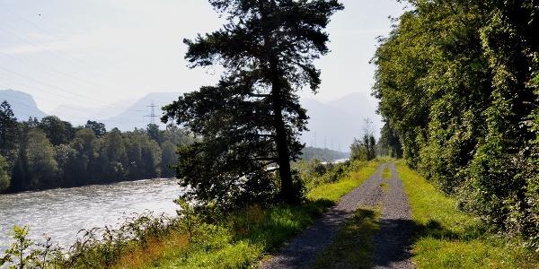 Der Rhein als Namensgeber des Trails