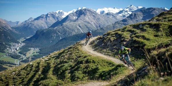 Oberhalb Samedan mit Bernina Massiv im Hintergrund