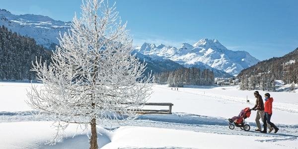 Winterwanderweg auf und neben dem Champfèrersee
