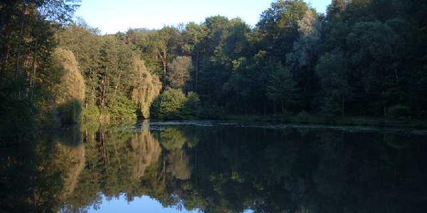 Jägersee unter dem Ottilienberg