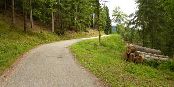 Typisches Schwarzwald-Sträßle