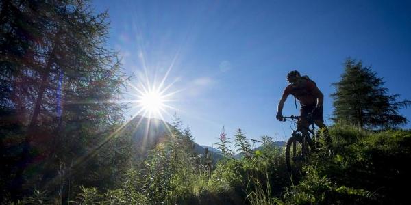 Kleble Trail (699)