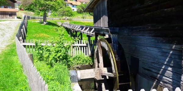 Mühlrad der Alten Mühle