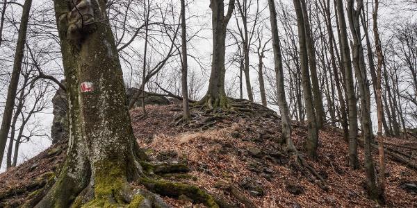 Sziklás, göröngyös ösvény vezet a csúcsra