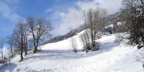 Wintermärchen Chalet Alte Mühle