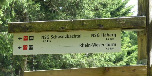 Weiter geht es zum Schwarzbachtal.