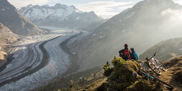 Stoneman Glaciara - Grosser Aletschgletscher