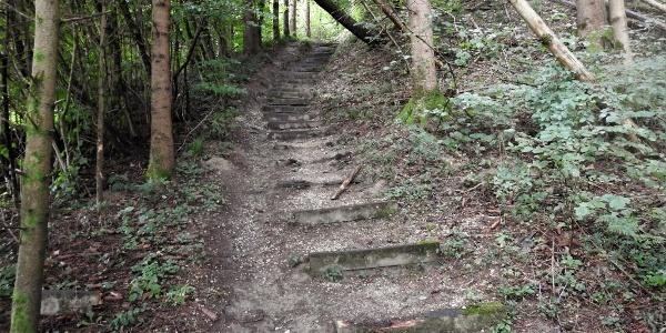 Längeres Wald-Treppenstück von Aebische aus
