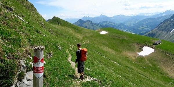 Weiss-rot-weiss markierte Bergwege auf dem Rochers de Naye.