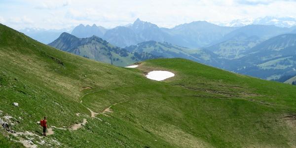 Abstieg vom Rochers de Naye zum Col de Chaude.