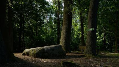 Lutherstein, Dübener Heide