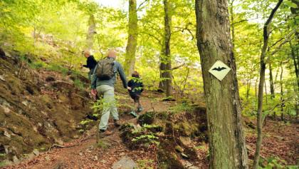 On the Wittgensteiner Schieferpfad (Wittgenstein slate trail)