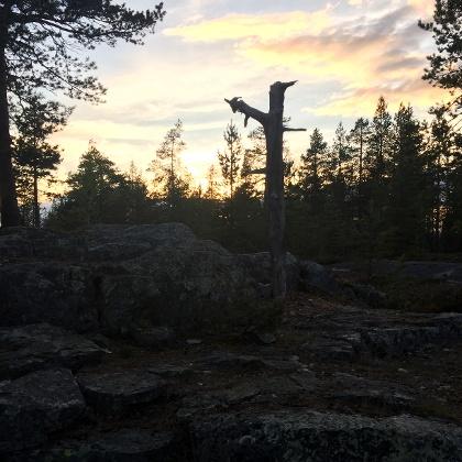 Ounasvaara near Rovaniemi