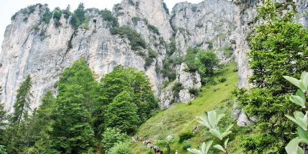 View towards Monte Carone