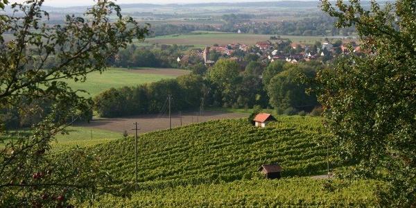Einzellage Schwobajörgle - Weinort Eschelbach