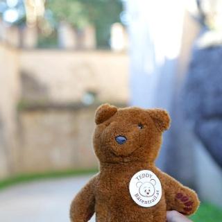 Teddybärentrail