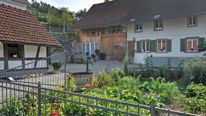 B&B Siglistorf Garten