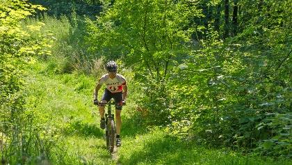Radfahren auf Trekkingrouten im Schmallenberger Sauerland