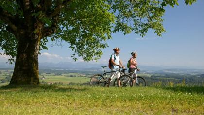 Radfahrer im Württembergischen Allgäu