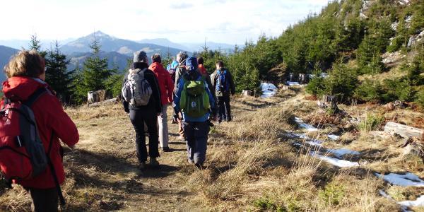 Höhenweg oberhalb der Buronlifte