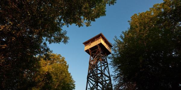Der Mettnau-Turm