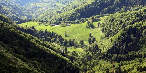 Panorama su Malga Grassi