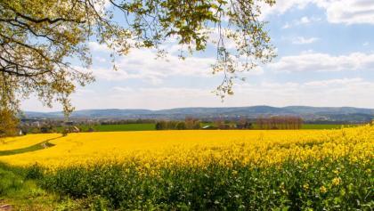 Pause mit Teutoburger-Wald-Blick