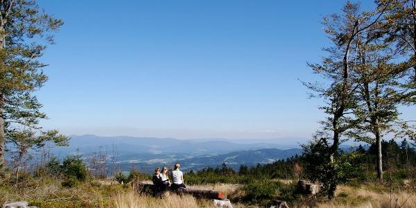"""""""Prölleralm"""" - Aussichtspunkt südöstlich vom Gipfel"""
