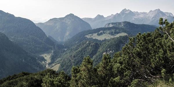 Blick vom Schaflsteig zu Bindalm und Litzlalm